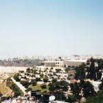 The Jerusalem Center for Near Eastern Studies (where I lived for 8 weeks)